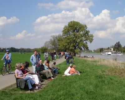 Elbauen und Elberadweg in Dresden Tolkewitz